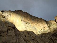 Rock Climbing Photo: Longs Peak Diamond in the morning light.  2010