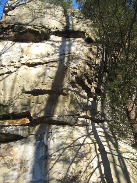 Rock Climbing Photo: Chunky Monkey follows the line of fixed draws.