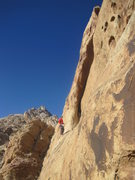Rock Climbing Photo: Lance on belay at the end of the long ledge below ...