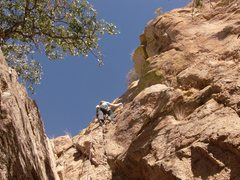 Rock Climbing Photo: Going up on gear only...that being said, this is a...