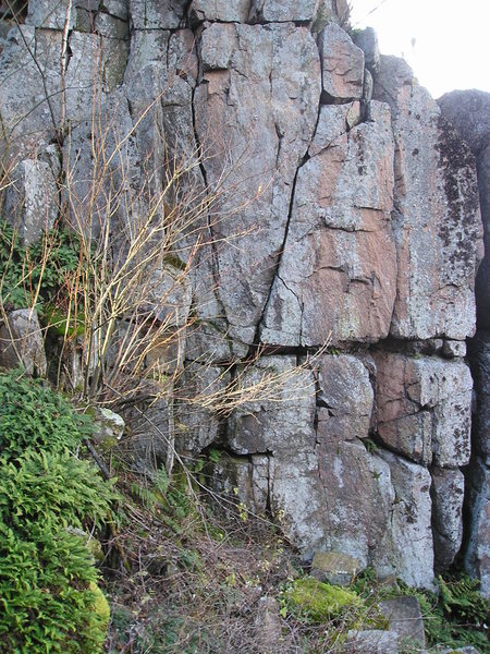 Base of Out of Tolerance  Climb where 2 vertical cracks V. 5 bolts anchors at top. Base is mossy can be slippery.
