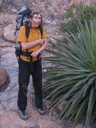 Rock Climbing Photo: Cochise foliage