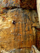 Rock Climbing Photo: Doug Fischer on Quinsana Plus, 5.13a.