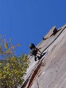 Rock Climbing Photo: on the amazing P5