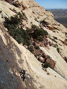 Rock Climbing Photo: Jascha following P1