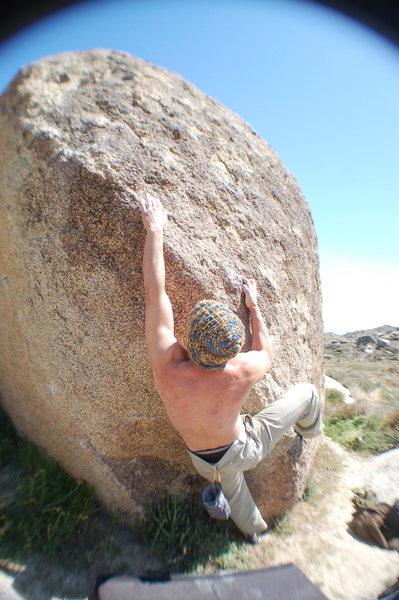 Rock Climbing Photo: Bearius workin the slopey arete