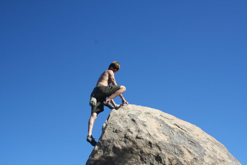Rock Climbing Photo: roadside boulders jt ca
