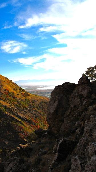 Rock Climbing Photo: butcrack butress