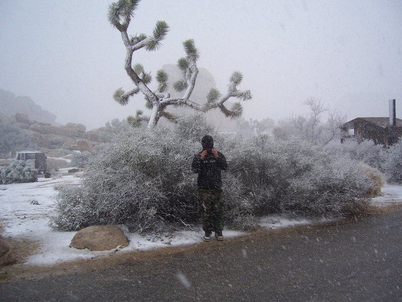Rock Climbing Photo: Why is it snowing in the Desert?