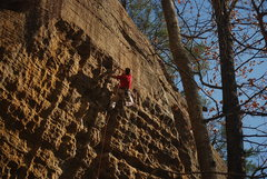 Rock Climbing Photo: Top of Malice