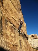 Rock Climbing Photo: Clipping the first bolt on Solo Dog.
