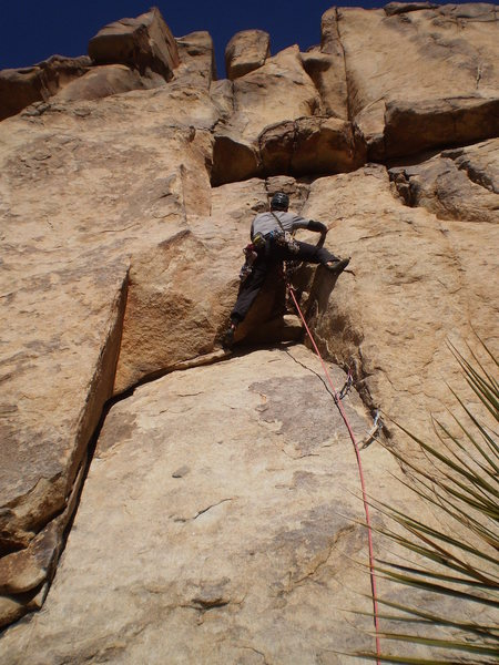 Rock Climbing Photo: A view from the bottom after finishing the crux of...