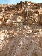 Rock Climbing Photo: Gamble on John.  Climb it!