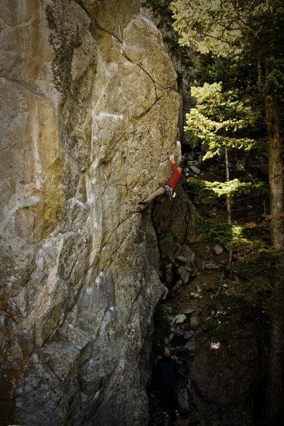 Rock Climbing Photo: Free Fall.