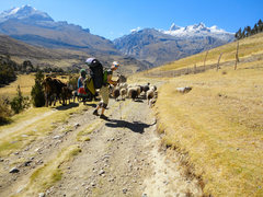 Rock Climbing Photo: High expectations on way into Ishinca Valley, Peru...