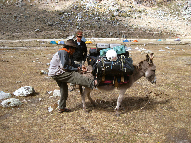 An arriero and his beast of burden.<br> Ishinca Valley, Peru.