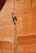 "Rock Climbing Photo: Angelina Kalianda on the first pitch of ""Cast..."