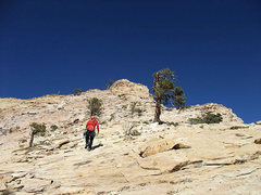 Rock Climbing Photo: the alternate descent (requires heading to the top...