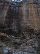 Rock Climbing Photo: Black Gold climbs the arcing line of draws through...