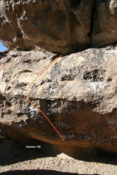 Rock Climbing Photo: Cholos Topo