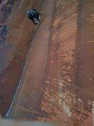 Rock Climbing Photo: the fall