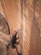 Rock Climbing Photo: leadin yin and yang 11.a