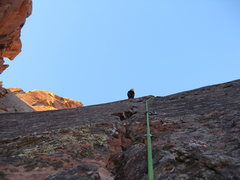Rock Climbing Photo: Looking up at the crux second pitch. We linked 1 a...
