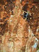 Rock Climbing Photo: Nicole on Yaak Crack