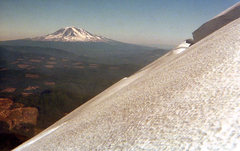 Rock Climbing Photo: Mt Adams from Mt. St. Helens. 1974. Photo by Blitz...