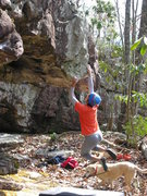 "Sheila Rahim working the starting moves of ""Why Not?"" (V2) on the Hero Wall."