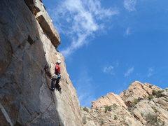Rock Climbing Photo: Rob enjoying it up.