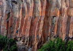 Rock Climbing Photo: Mike Knarzer on Giardia Crack 5.11+