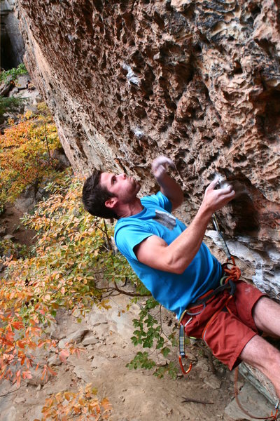 Rock Climbing Photo: Fred on Wild Gift: sun's out, guns out!