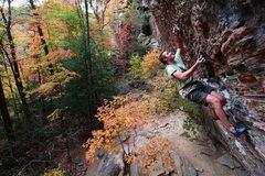 Rock Climbing Photo: Jesper on Wild Gift.
