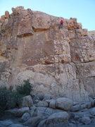 Rock Climbing Photo: Joshua Tree - The Thin Wall 11/16/10