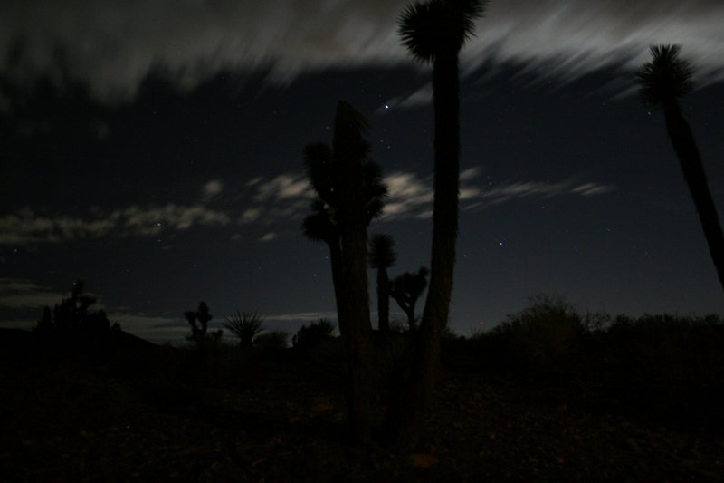 Rock Climbing Photo: Desert night.
