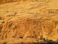 Rock Climbing Photo: Dog Wall