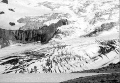 Rock Climbing Photo: Nisqually Glacier, 1975. Photo by Blitzo.