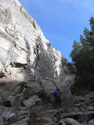 Rock Climbing Photo: Max going to the Kwik-E-Mart.