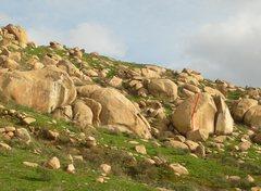 Rock Climbing Photo: Pschoanalysis in red