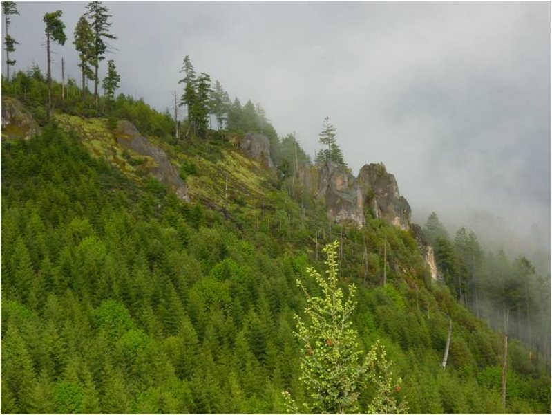 Rock Climbing Photo: Hills Creek Spires as you are coming up the forest...