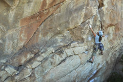 Rock Climbing Photo: Casey McTaggart warming up at J-Tree