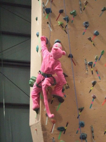 Earth Treks, Timonium Maryland. Halloween party. Lucy Ann Clark climbing in Pink Panther costume.