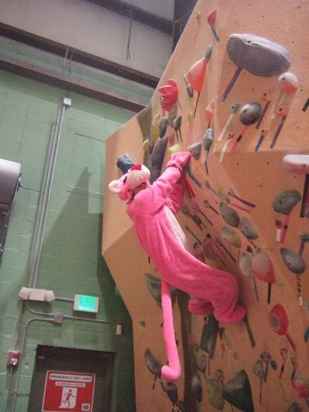 The pink panther, aka: Lucy Clark, boulders at Earth Treks, Timonium, MD.