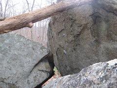 Rock Climbing Photo: Eye Candy.