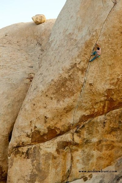 Stingray, 5.13+<br> <br> Posted with release from photographer Andrew Burr