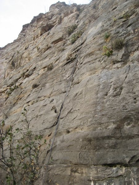 Rock Climbing Photo: After cleaning out the brush and dirt, this line a...