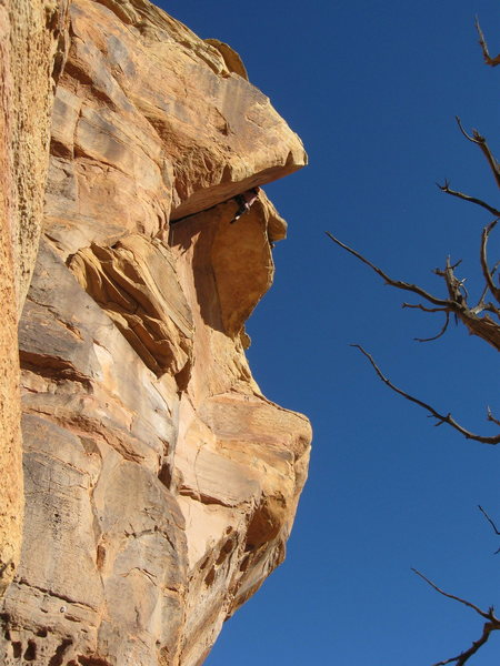 Rock Climbing Photo: James remembering how steep this thing is?