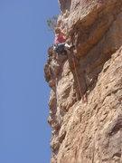 Rock Climbing Photo: Tracy mid-crux on Shelfish.