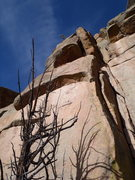 Rock Climbing Photo: Nate Meader linking the Dark Meat variation with T...